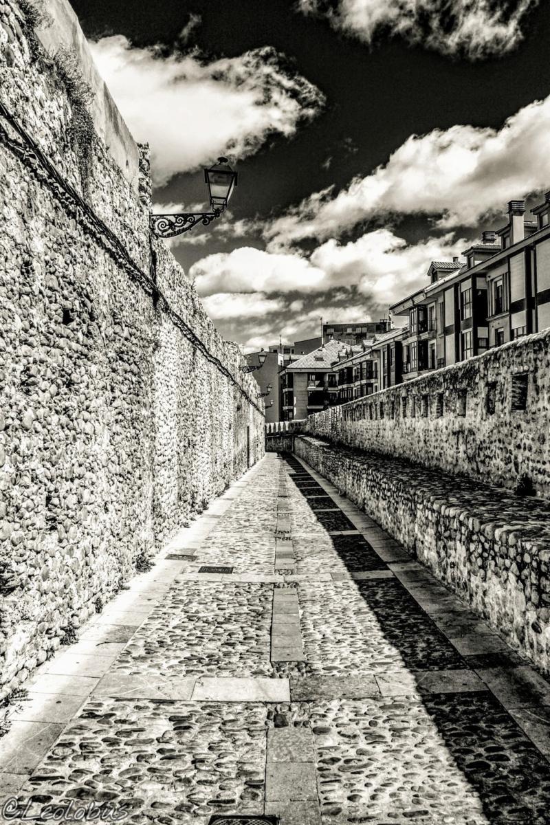 En el Barrio Húmedo los judíos desarrollaron la práctica del comercio, la artesanía e incluso la ganadería. En el siglo XIII, los judíos leoneses vivieron con relativa libertad en su nuevo emplazamiento hasta su expulsión en 1492 por los Reyes Católicos.