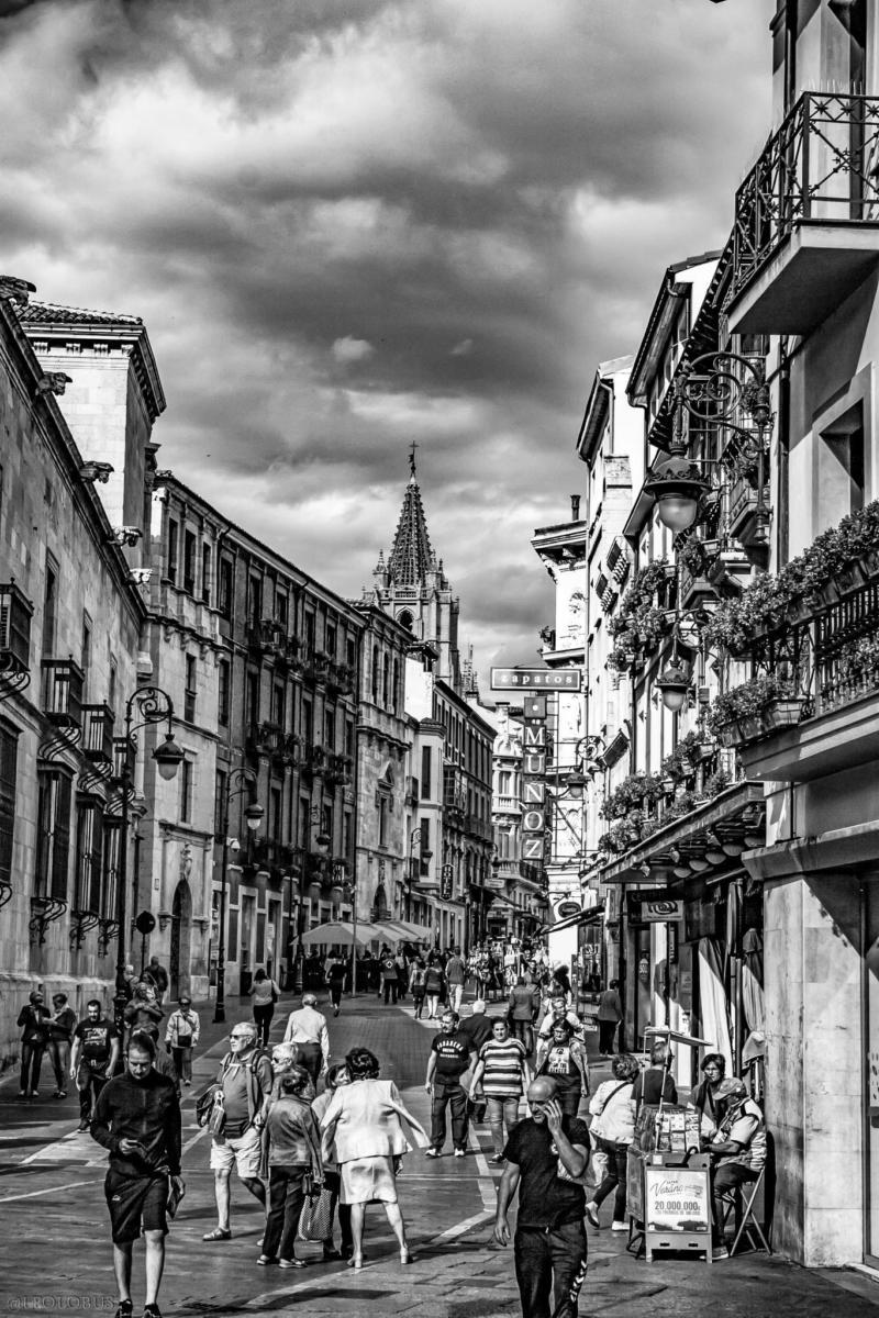 Es la calle principal por excelencia, no solo del Barrio Húmedo, sino del centro histórico de la ciudad. Cuenta con la mayor concentración de comercios y establecimientos de hostelería del casco histórico.